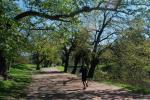 Parque El Prado